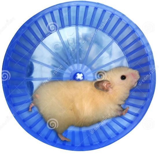 Exhausted-Hamster-in-a-Wheel