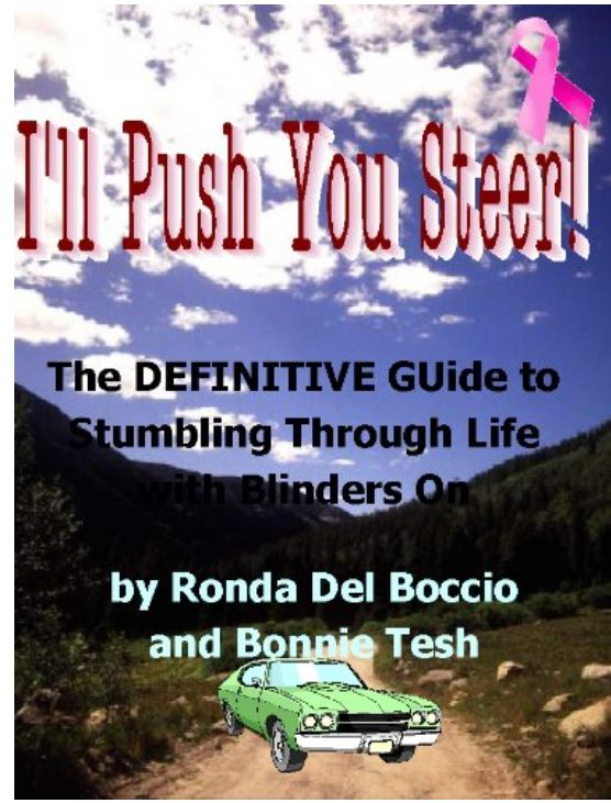 I'll Push You Steer Kindle cover